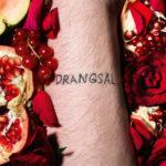 Drangsal – Allan Align